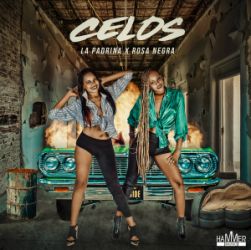 celos-cover-1-600x600-300x300.png