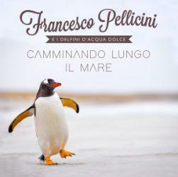 cover-FRANCESCO-PELLICINI-Camminando_lungo_il_mare-big-300x300.jpg